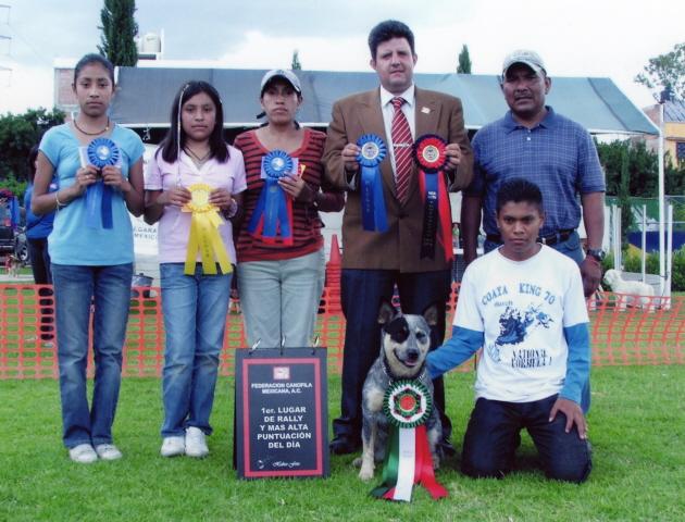 Adiestramiento Canino en Cuautitlán Izcalli | Mundo Kanino